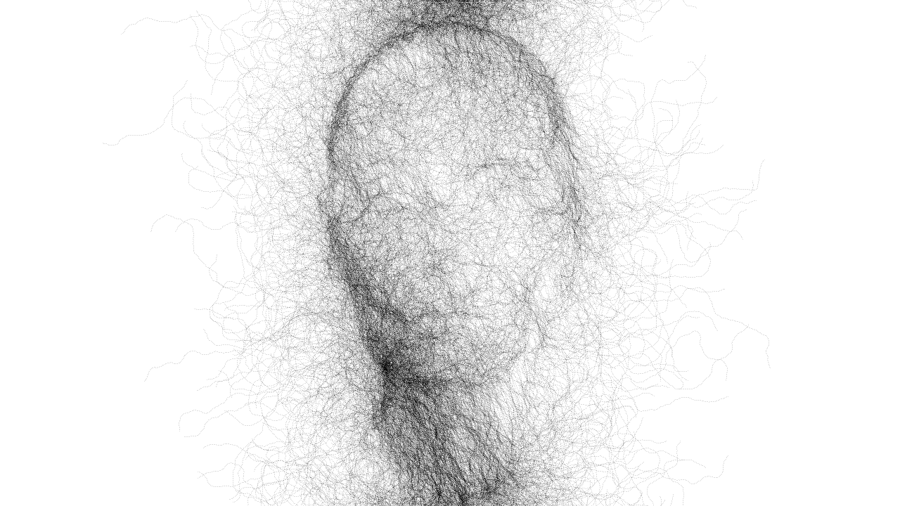 Face computed draw based on generative algorithms, by João Martinho Moura (2014)