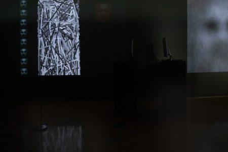 ISEA 2019. Special Exhibition. How Computers Imagine Humans? João Martinho Moura